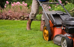 best lawn care companies